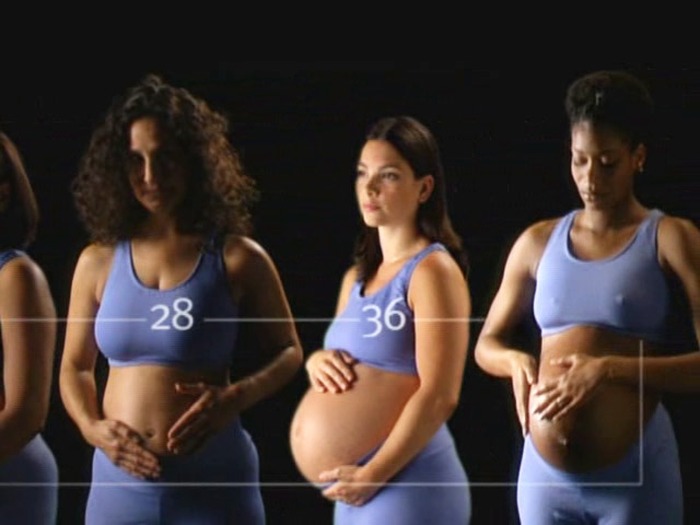 The Ultimate Guide: Pregnancy (2003)